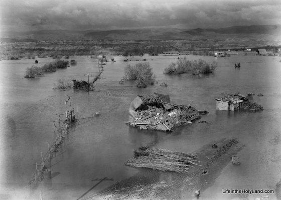 Jordan River, flood covering area by Allenby Bridge, mat04340 800