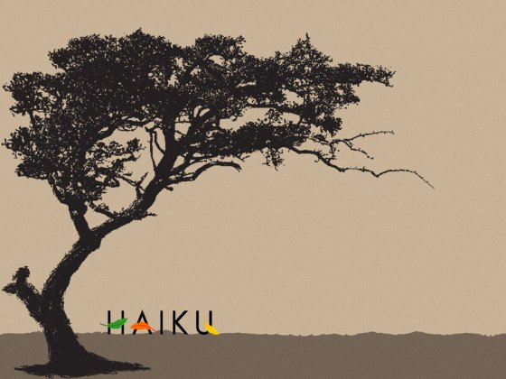Haiku_Wallpaper_Test_IV_by_pizte