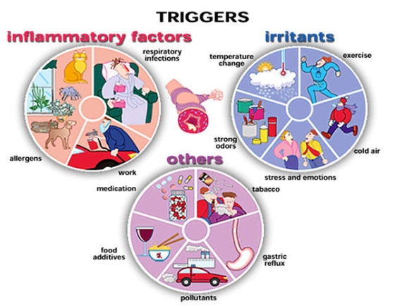 asthma-triggers-01